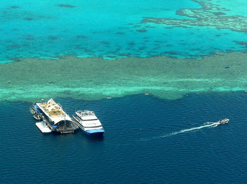 visiter la grande barriere de corail