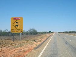 Quels sont les meilleurs tours et circuits à faire en Australie ?