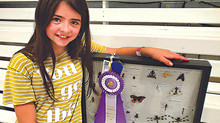 Swan River 4H kids bring home ribbons