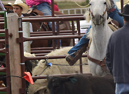 Polson High School and Junior High Rodeo -- Photos and Results