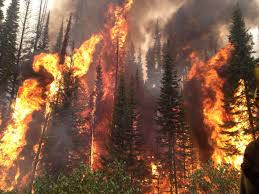 The Era of Megafires