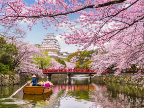 The Complete 2-week Itinerary for Japan with kids