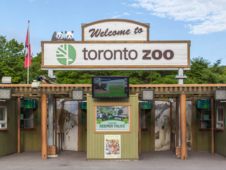 VISITING TORONTO ZOO WITH YOUR KIDS