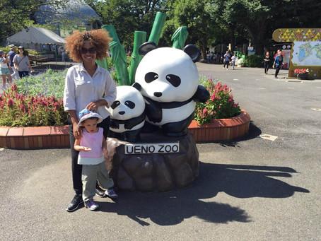 Exploring the Tokyo's Oldest Zoo: UENO ZOO