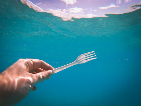 6 Million Tons of Single-Use Plastics Get Thrown Out Every Year! Here's How You Can Stop This Waste