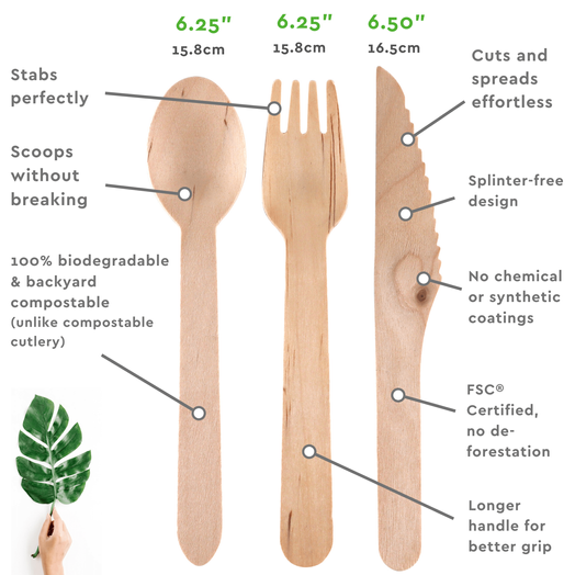 Disposable Wooden Cutlery Features