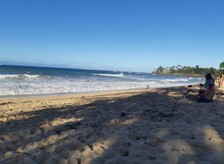 Christmas Time in Hawai'i