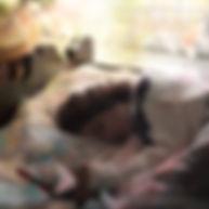 Sleep Great Korrine Holt 2a.jpg