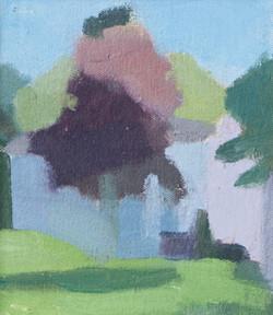 Aubergine Tree