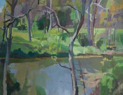Lodge Creek_oil on canvas_23.5x30.25_20.