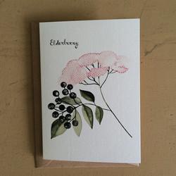 VALESCA VAN WAVEREN_elderberry