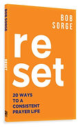 Reset_cover_3d.jpg