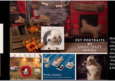 Pet Portraits Mini Sessions NOW BOOKING!