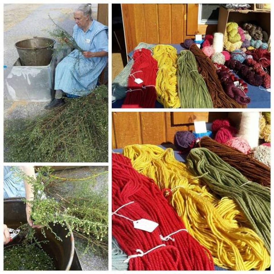 Dede Styles dyeing wool