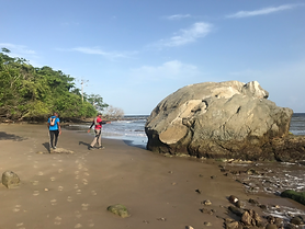 (8) Palo Seco to Los Iros Beach Walk.png
