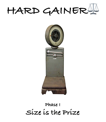 Hard Gainer - Phase I
