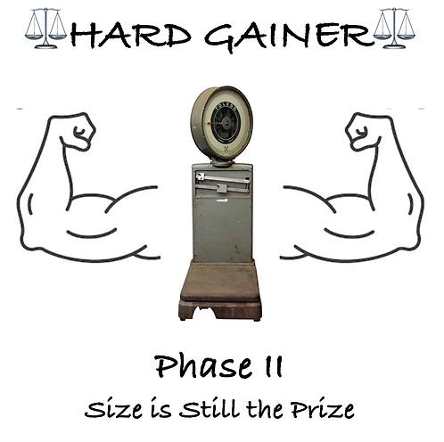 Hard Gainer - Phase II