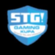 stg-cimer.png