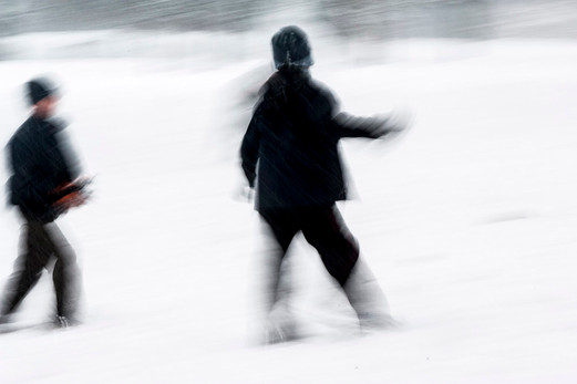 Snowscape II