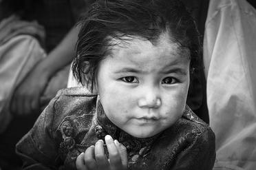 Dalai's witness