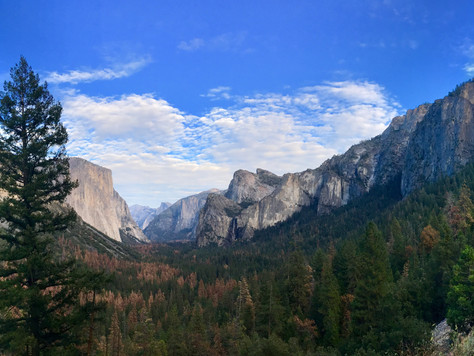 Weekend Trip to Yosemite