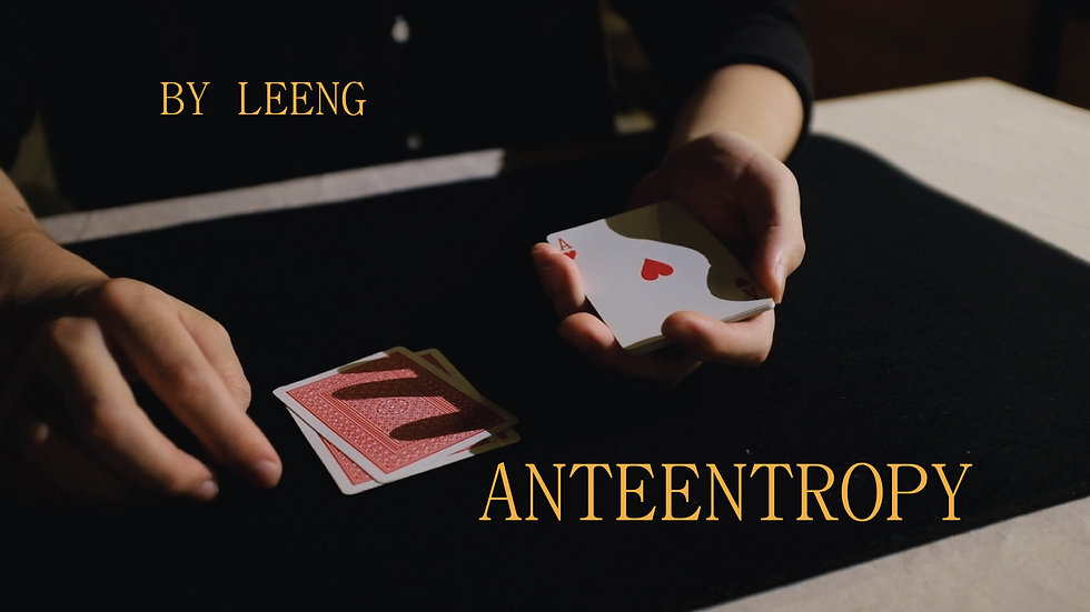 Anteentropy by Leeng