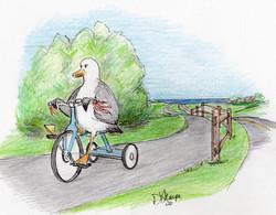 Day 15: Chuck goes bike riding