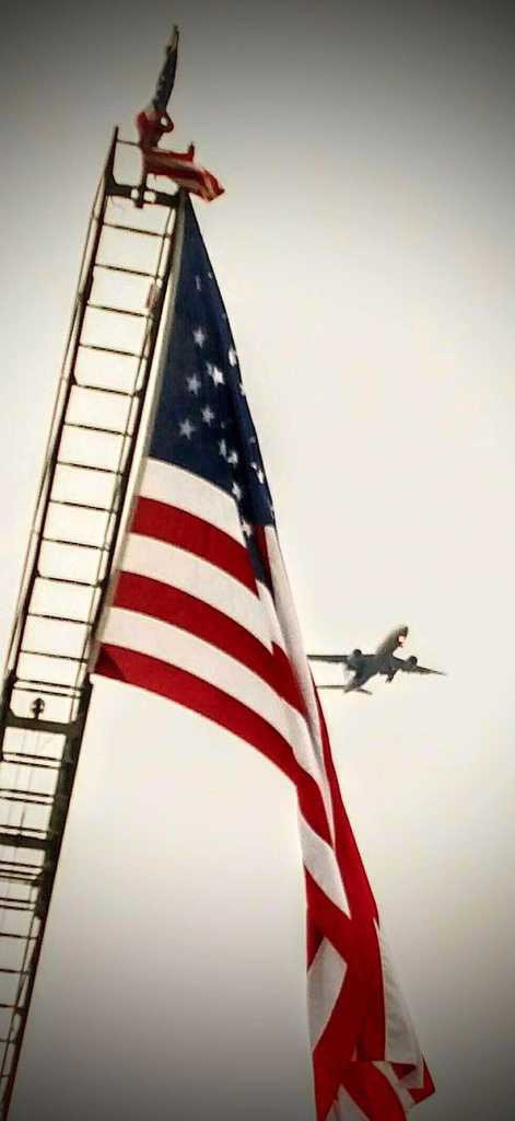 Flag with plane