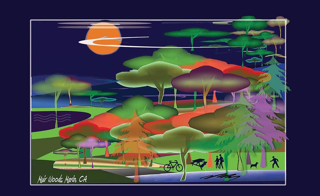 Artist Rendering: Muir Woods