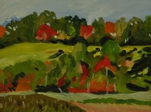 Boone, NC Landscape