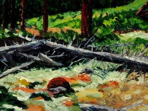 Miner's Creek