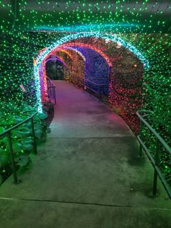 Atlanta Botanical Garden Holiday