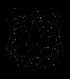 CP-Vector-Logo.png
