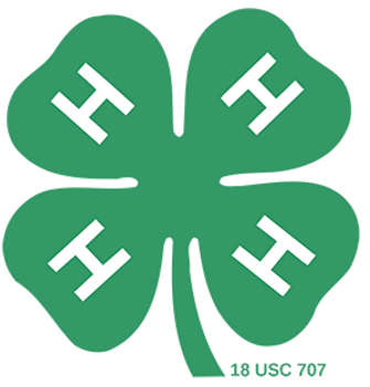 clover-300.png