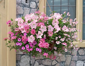 "Bridal Bouquet 14"" Wicker Hanging Basket"