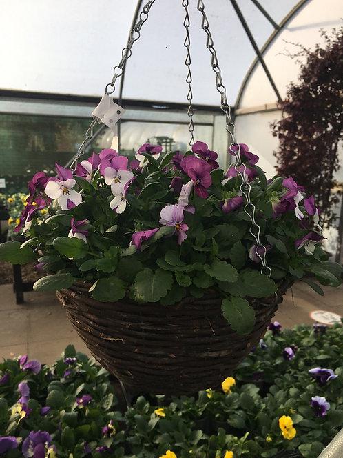 "Planted 12"" Wicker Basket"