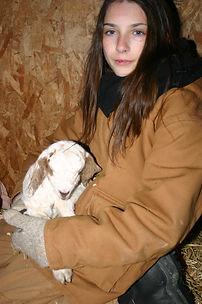 2014 Goat 1.JPG