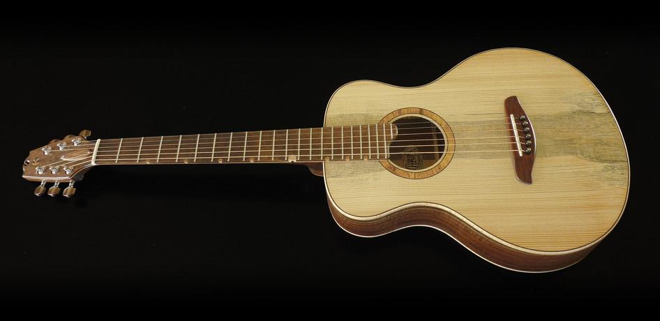 Beetlekill Parlor Guitar