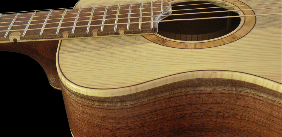 parlor_guitar_#1_06.jpg