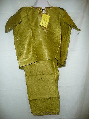 Teen Green Brocade with Gold Embroidery
