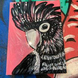 Famous Black Cockatoo
