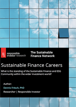 Sustainable Finance Careers