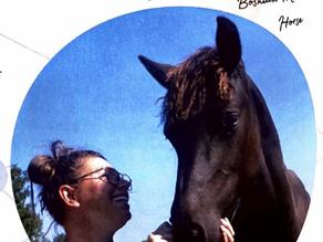 Onze paarden moeten steviger, niet soepeler (Dutch)