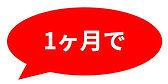 スクリーンショット 2021-03-17 17.15.55.jpg