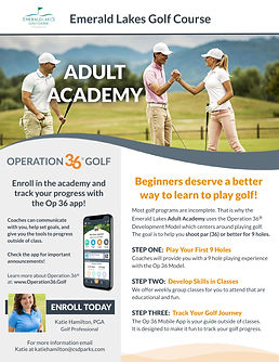 Copy of Copy of Adult Academy Program Fl