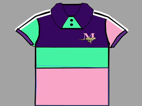 MEN'S  PURPLE/TEAL/PINK POLO