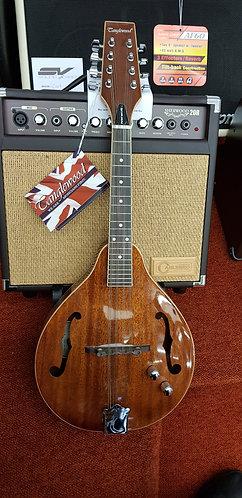 Tanglewood TWMT-MH-STE mandolin