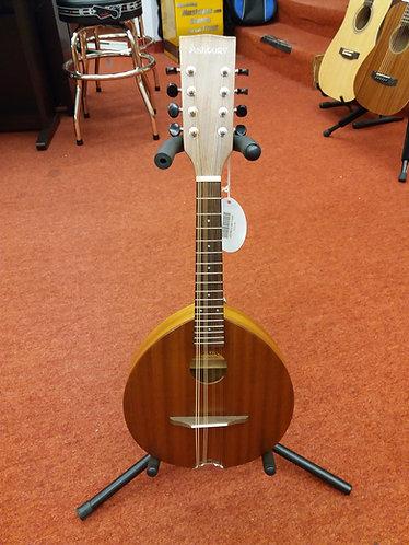Ashbury AM-110 Mandolin
