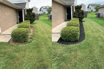 before after lawn1.png