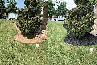 before after lawn3.png